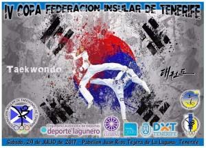IV Copa