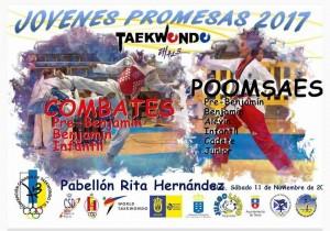 JOVENES PROMESAS 2017